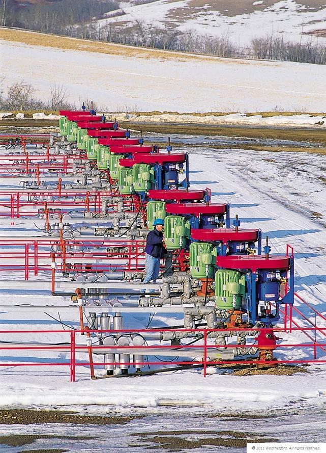 Bmw field multiple wellheads